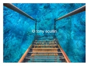 Tony Scullin at 7 Artists and Friends in Wet Paint Gallery Key West, Florida